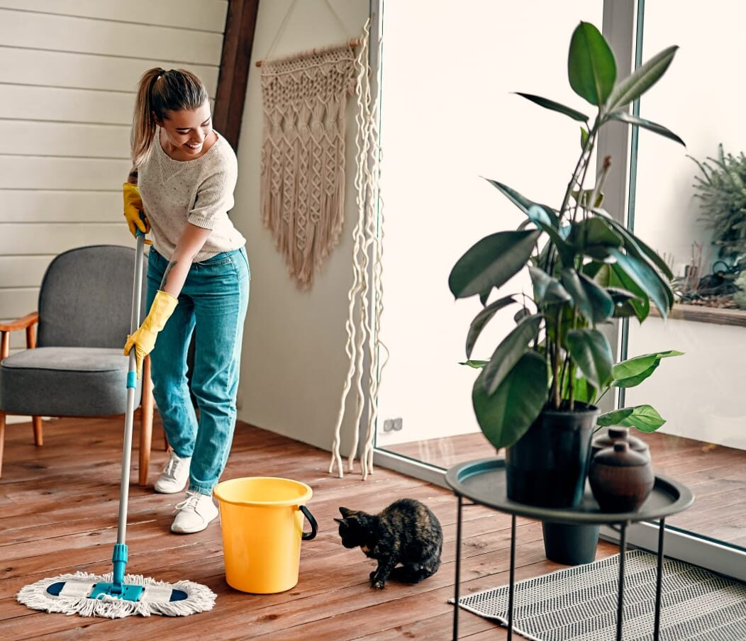 eco cleaning brisbane